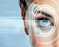 Dr. Kemp Quantum Vision