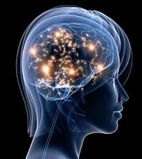 The Migraine Protocol