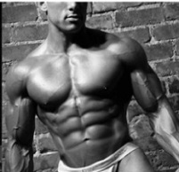 John Romaniello Omega Body Blueprint